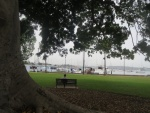 Beare Park with a view to the Elizabeth Bay Marina