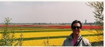 On a trip to Holland to visit our youngest daughter Nicole in 2004. She lived in the tulip-growing region. Absolutely gorgeous place