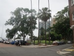 Beare Park on The Esplanade at Elizabeth Bay, where Noel has her little flat