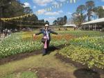 Floriade 2015, Canberra's annual flower festival